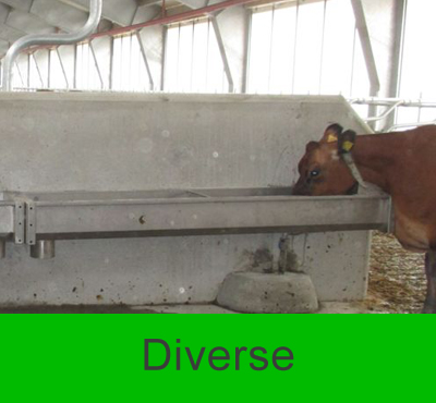 #diverse